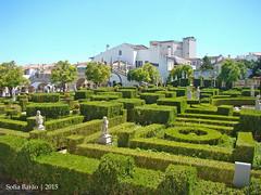 Jardim do Paço Episcopal, Castelo Branco 03 (Sofia Barão) Tags: portugal beira baixa jardim garden