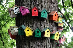 Nestboxes # 3 (just.Luc) Tags: nestboxes nestkastjes nichoirs nistkasten cajanido nidoartificiale puurs coolhem kleinbrabant vlaanderen flandres flanders belgië belgien belgique belgium belgica colors couleurs kleuren farben colours wood hout bois holz