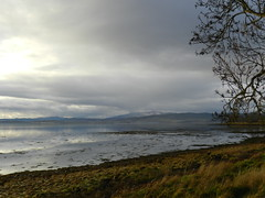 Gathering Cloud, Redcastle, Black Isle, Dec 2018 (allanmaciver) Tags: gathering cloud beauly firth trees water reflections light clouds grey day sky moody low view black isle scotland highlands allanmaciver