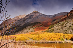 It is difficult even to choose the adjective (AgarwalArun) Tags: sony a7m2 sonyilce7m2 landscape scenic nature views easternsierra bishopca bishopcreek lakes leaves autumn fallfoliage mountains inyonationalforest