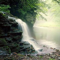 (babireley) Tags: tumblingrun painterleetoniaroad cedarrun tiogacounty minoltaautocord kodakektar100 tiogastateforest northcentralpa pawilds waterfall