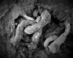 BOUND FOREVER (sciatore73!) Tags: black and white rust close up monochrome iron leitz summicron fuji xt1