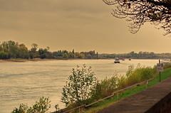 30 Dusseldorf octobre 2018 - le Rhin le matin (paspog) Tags: dusseldorf düsseldorf allemagne germany deutschland octobre october oktober 2018 matin morgen morning fleuve river fluss rhin rhein rhine