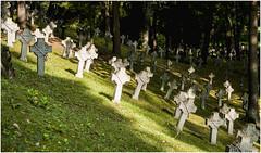 156-NUNCA APRENDEREMOS A CONVIVIR -CEMENTERIO DE ANTAKALNIS -VILNIUS- LITUANIA - (--MARCO POLO--) Tags: cementerios ciudades curiosidades rincones