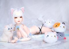 Catgirl (kaili_tang) Tags: luts dollfiedream bjd sd13 lingerie ray catgirl doll