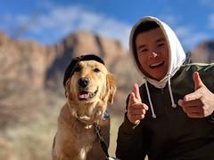 00100lPORTRAIT_00100_BURST20181228143725444_COVER (KevinXHan) Tags: zions national park dog golden retriever cute aww parus trail hike walk nature outdoors google pixel3 photoblog photodiary