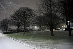 DSC08796 (olliethewino) Tags: bath southdown snow trees