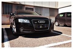 Audi A5 - #2 (Moro972) Tags: calandra forward front effect iphone6 parking day italy italia auto wheels car a5 audi nero black bianco white cornice border