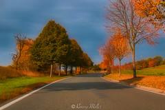 Wonderful Autumn ..... (newyork2410) Tags: autumn canon photografie treebrilliance autumnfall photography photographer landscape landscapephotographer