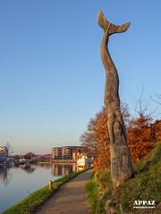 Wooden Sculpture in the Harbour, Silkeborg (Appaz Photography☯) Tags: silkeborghavn denmark jylland silkeborg søer lakes gudenå gudenåen remstrupå gudenåensilkeborg people fishing fisker sculpture oldwood appazphotography