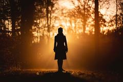 Sunrise Silhouette (Bastian.K) Tags: wald stuttgart forest autmun kräherwald portrait environmental sony 85mm 14 fe gm gmaster silhouette sonnenaufgang sonne nebel light licht lightray rays boots woman girl