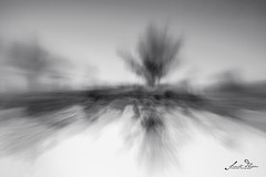 D75_7200 (@sumitdhuper) Tags: wallshare background whitespace art creative nature abstract motion intentionalcameramovement icm zoomin zoomout zoom lens movement monochrome blackandwhite