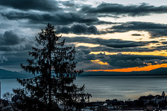 Guest (BeNowMeHere) Tags: ifttt 500px view benowmehere city colour colours guest lake lakegeneva lakeleman lakeléman landscape lausanne nature sky sunset switzerland clouds color colorful colourful suisse swiss travel trip sunrise dawn dramatic dusk twilight idyllic moody sun horizon fog
