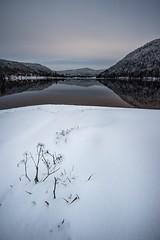 Portrait/Paysage (Manonlemagnion) Tags: paysage nature vosges froid hiver neige givre eau reflets lac nikond810 1635mmf4