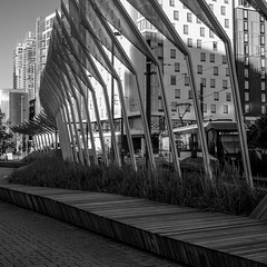 1X1BW-1091 (John Grubb Photos) Tags: blackwhite blackandwhite calgary streetphotography streetshots street project fujixpro1 squareformat