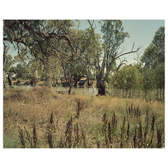 QFV-13 (sm0r0ms) Tags: mamiya7 6x7 kodak 120 film analog landscape mediumformat colorphotography newtopographics contemporarylandscape
