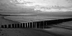 only the sea (ELECTROLITE photography) Tags: onlythesea sea water sky clouds beach lamer stand wasser wolken himmel blackandwhite blackwhite bw black white sw schwarzweiss schwarz weiss monochrome einfarbig noiretblanc noirblanc noir blanc electrolitephotography electrolite zingst
