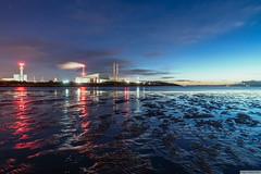 Sandymount, early morning. (PeterJJC-Ireland) Tags: garristown dublin ireland ie