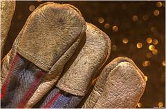 My old work gloves. (Vicent Ramiro) Tags: safety gloves guantes bokeh macromondays seguridad trabajo work textura texture cuero leather