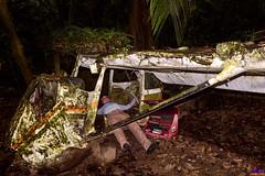 Maintenance (roijoy) Tags: plane wreck 1649 belize jungle
