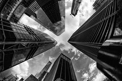 WTC fisheye (Francis Mansell) Tags: fisheye skyscraper building architecture officeblock sky cloud newyork worldtradecenter 3worldtradecenter 4worldtradecenter financialdistrict manhattan lowermanhattan monochrome blackwhite niksilverefexpro2 1libertyplaza libertyplaza cortlandtstreet