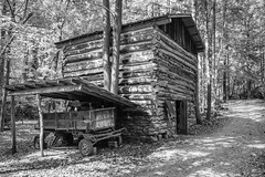 Cabin in the woods (Brandon Westerman WNP) Tags: cabin woods forest log trees road bnw blackandwhite monochrome architecture building south rural georgia country
