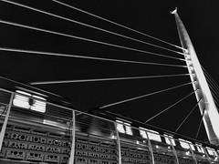 Istanbul Night Metro (Packing-Light) Tags: eurasia istanbul travel turkey tr bw blackandwhite train bridge lines night metro iphone lights geometry