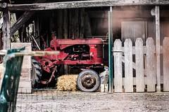 """""""Dans l'oubli"""" (leguen.maxime) Tags: tracteur oublié rouge ancien mécanique ferme hiver loiret"""