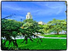 Il Duomo (simona300) Tags: fermo porto san giorgio landscape verde explorer marche parco alberi fontana architettura panorama erba edificio albero cielo