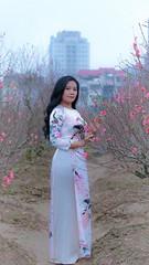 Beauty (khoitran1957) Tags: aodai vietnam travel fashion woman flower spring