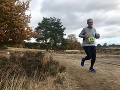 haarlerbergloop 10 km (82)