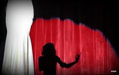 Marilyn Monroe? (bezkaski1) Tags: marilyn monroe photo show shadows colour song dnieper students university rectors cup rector dancing songs figurine woman glitter autumn november студентв дну университет дворец дніпро шоу осень