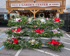 wreaths (Eric.Ray) Tags: wreaths christmas decorations green 2018 365 suffolk county