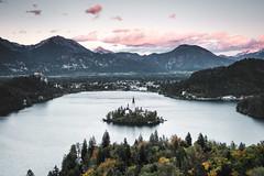Lake Bled, Slovenia (Sunny Herzinger) Tags: autumn slovenia sunset bled alps island church europe lake fall fujixt3 mountain bledmunicipality si