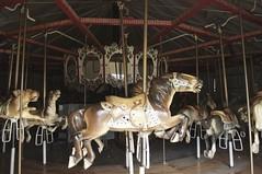 Highland Park Carousel - Horses At The Ready (pecooper98362) Tags: union townofunion newyork highlandpark carousel merrygoround highlandparkcarousel horsesattheready freeadmission autumn aftertheseason autumnsun