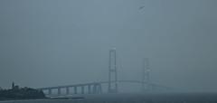 Storebælt Bro (BÖ) Tags: storebælt bro brücke brige dänemark denmark danmark fog nebel tåge meer hav sea