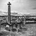Cædmon's Cross