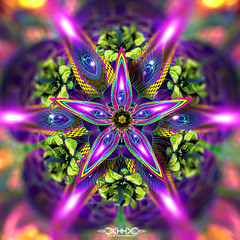 """Sylvan Perception Detail 05 • <a style=""""font-size:0.8em;"""" href=""""http://www.flickr.com/photos/132222880@N03/45008573065/"""" target=""""_blank"""">View on Flickr</a>"""