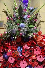 Poppy Display - World War One Celebration & Remembrance Week-end (WanderingPJB) Tags: england northumberland stannington stmaryschurch parish worldwarone celebration remembrance unionjack lights red poppy display