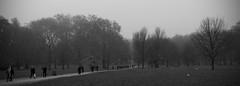 Cut through the park (rwbthatisme) Tags: