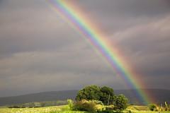 Yonder Rainbow (milfodd) Tags: july 2018 potdjuly25th2018 rainbow