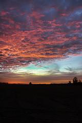 1211-coucher de soleil 157 (sebastien.demotier) Tags: champlieu orrouy picardie coucher de soleil campagne field cloud nuage rouge red blue sky ciel