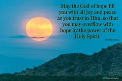 Romans 15:13 (Carl Cohen_Pics) Tags: romans newtestament bible scripture pictureofscripture holyspirit peace joy romans1513 paul hope light o