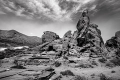 Valley of Fire (Agirard) Tags: bw nb bird valley fire nevada usa batis batis18 18mm 2818 2818mm zeiss sony a7ii