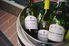 """Boschendal"" (Eric Flexyourhead) Tags: delft zuidholland southholland netherlands holland nederland detail fragment display wine bottles winebottles southafrican southafricanwine chardonnay sauvignonblanc boschendal green sonyalphaa7 zeisssonnartfe35mmf28za zeiss 35mmf28"