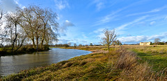 CROOME LANDSCAPE (chris .p) Tags: croome nikon d610 worcestershire england uk croomecourt nt winter 2018 nationaltrust park december trees view capture