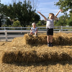 "Dani and Paul on Hay Bales • <a style=""font-size:0.8em;"" href=""http://www.flickr.com/photos/109120354@N07/45703882394/"" target=""_blank"">View on Flickr</a>"
