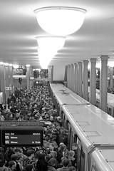 U5 ersetzt S-Bahn (oder so ähnlich....) (M. Schirmer Berlin) Tags: deutschland germany berlin mitte lichtenberg streckensperrung bauarbeiten sbahn ubahn metro subway kleinprofil ik icke blumenbretter spaltüberbrückung landeklappen u5 s3 s5 s7 s75 s9 beberlin chaos constructionworking bvg schwarzweis monochrome gedränge rushhour 5november2018 051118 181105