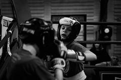 39576 - Hook (Diego Rosato) Tags: boxelatina boxe boxing pugilato criterium giovanile young little boxer piccolo pugile nikon d700 tamron 2470mm rawtherapee bianconero blackwhite ring match incontro pugno punch hook gancio