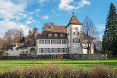 Au Castle (Bephep2010) Tags: 2018 7markiii alpha au auzh baum herbst ilce7m3 sel1635z schloss schweiz sony switzerland wiese zurich zürich autumn castle fall meadow tree ⍺7iii kantonzürich ch